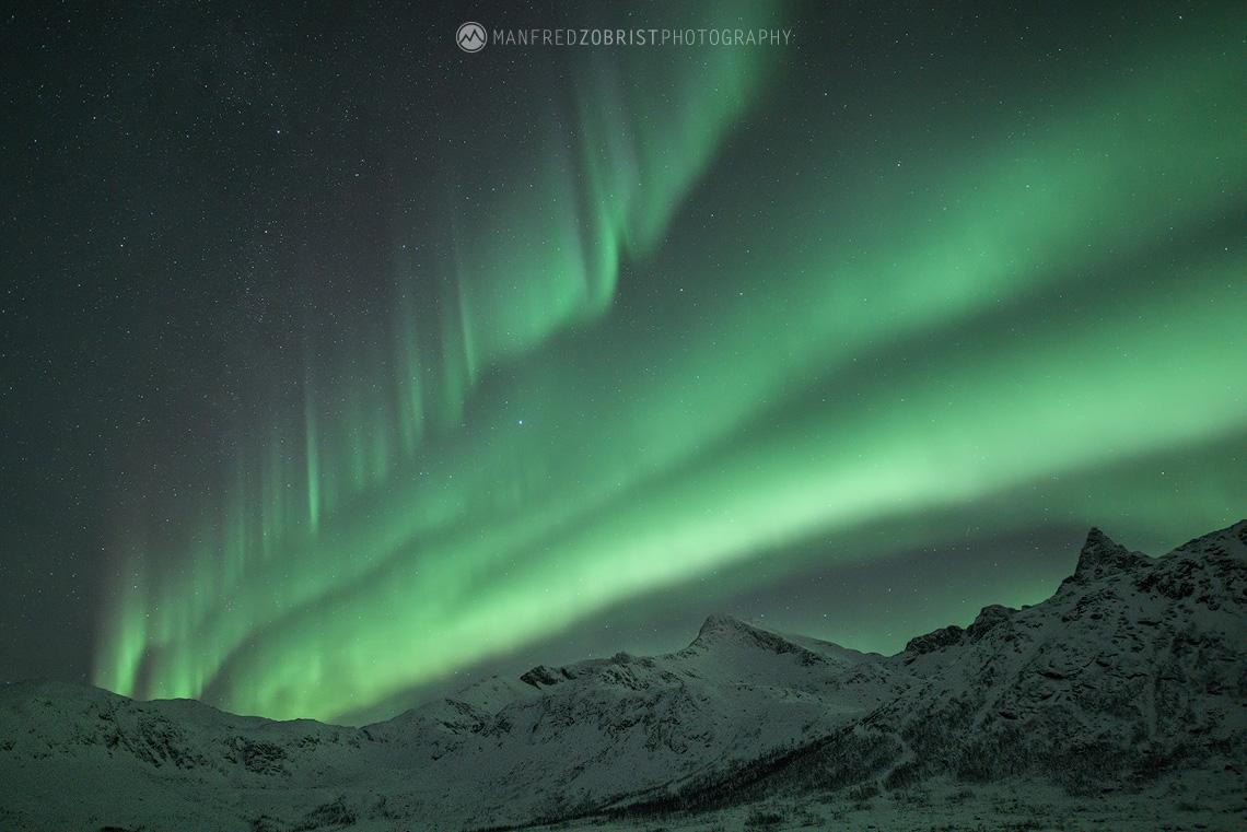 Aurora Nocturne