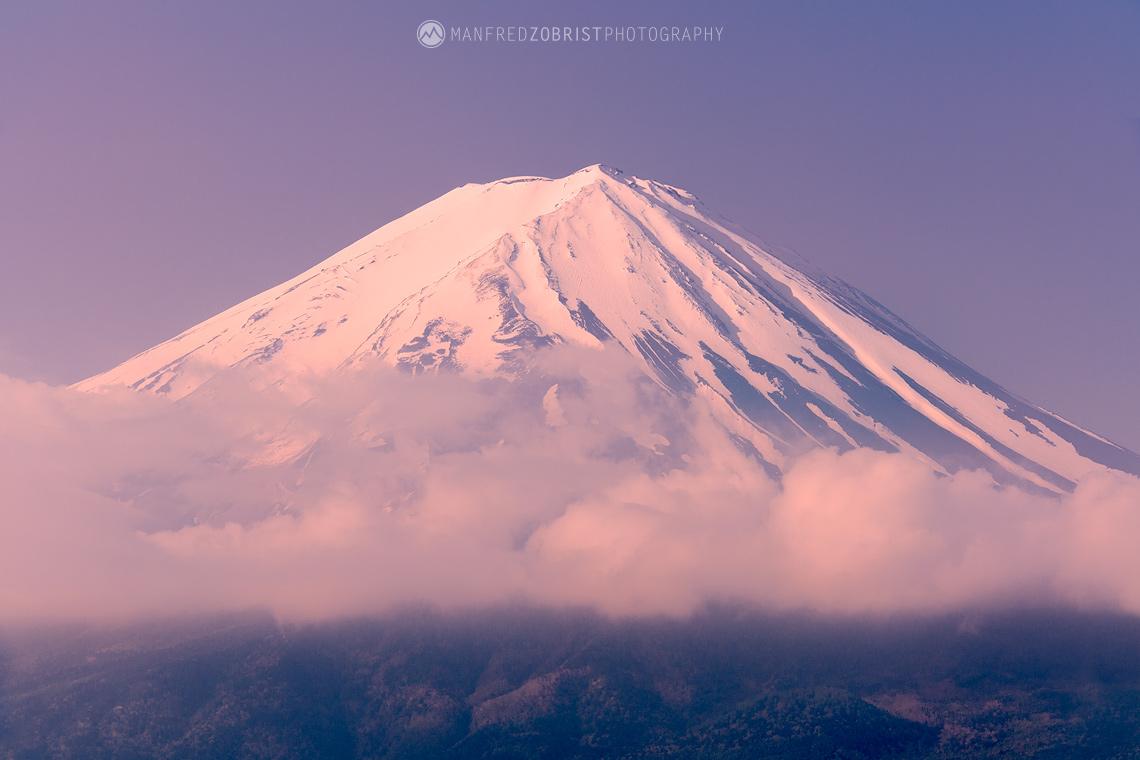 Majestic Fuji