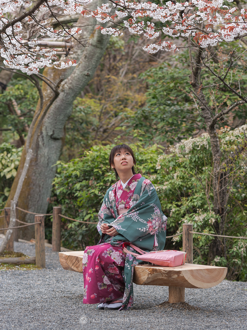 Sakura Ceremony